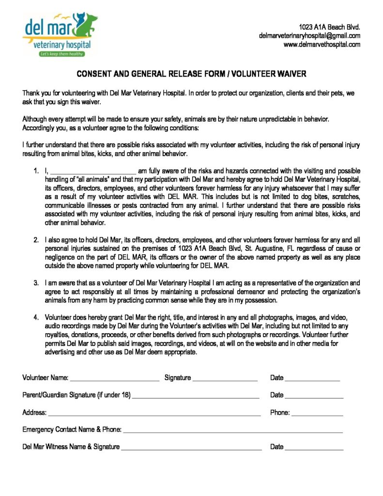 dmvh consent general release form volunteer waiver 791x1024jpg - Hospital Release Form