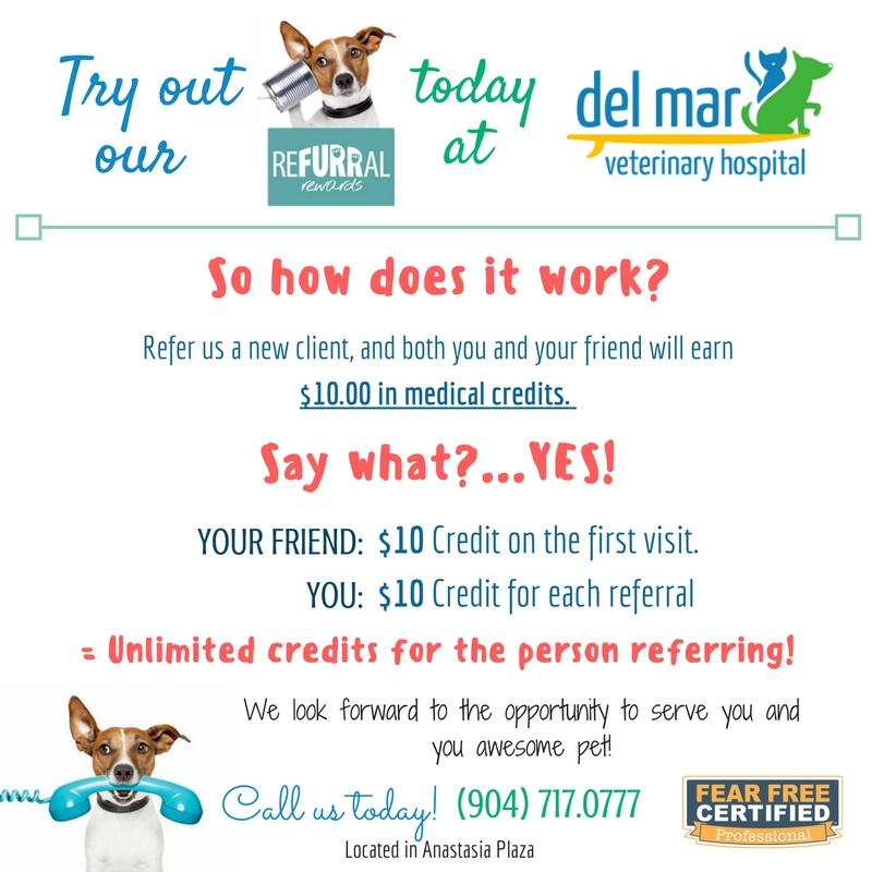 refer a friend email template - specials del mar veterinary hospital del mar